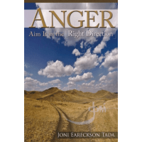 Anger: Aim It in the Right Direction - [Minibook]